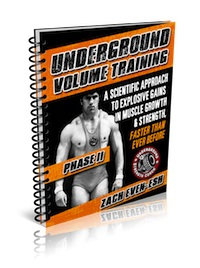 Underground Volume Training, Phase II - December 2012 Workout of The Month